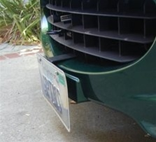 Lotus Front License Plate Mount